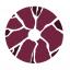 Plasmatic eSports Logo