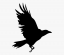 Nevermore Logo