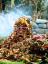 The Trash Heap Logo