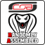 CoB Randomly Assembled Logo