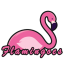 Flamingoes Logo