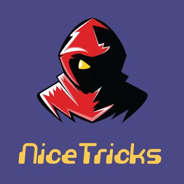 NiceTricks Logo