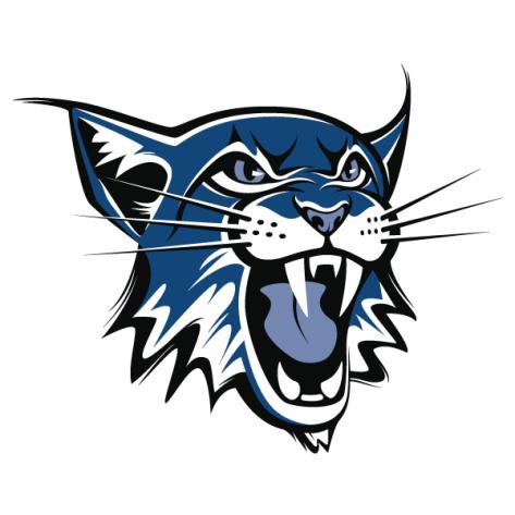 BlueLynx Logo