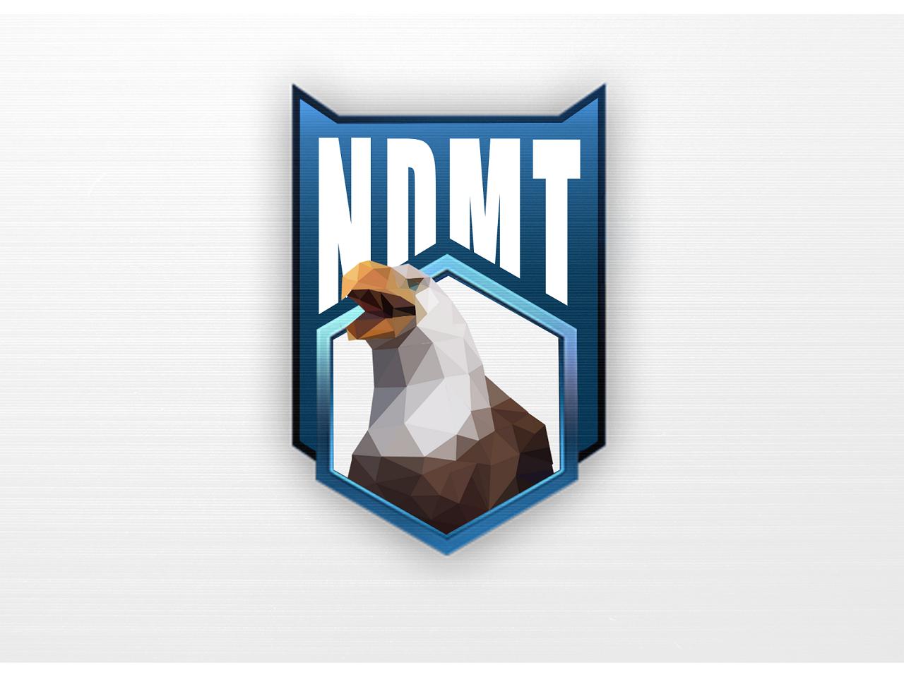 NDMT Logo