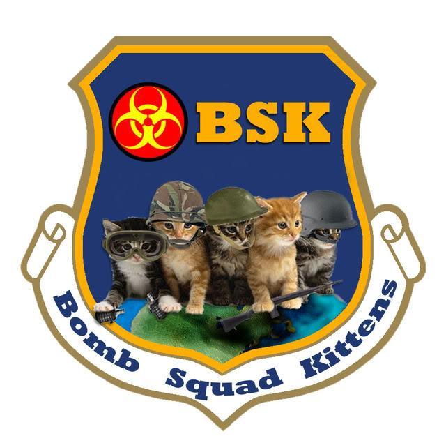 Bomb Squad Kittens