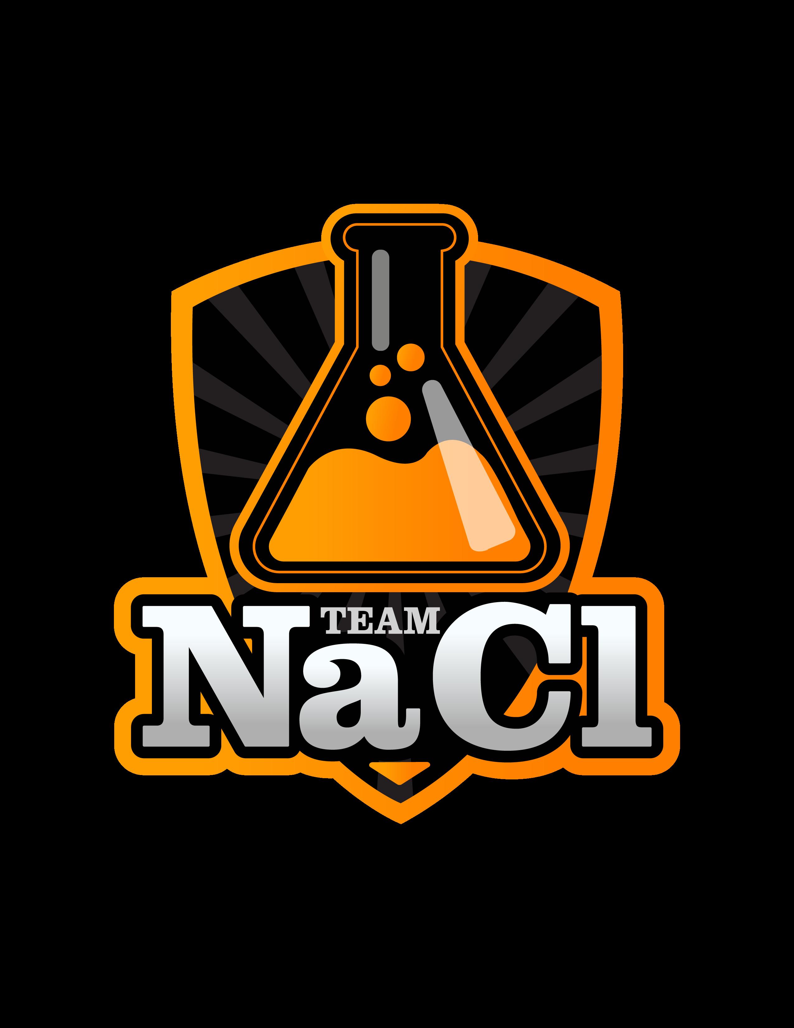Team_NaCl