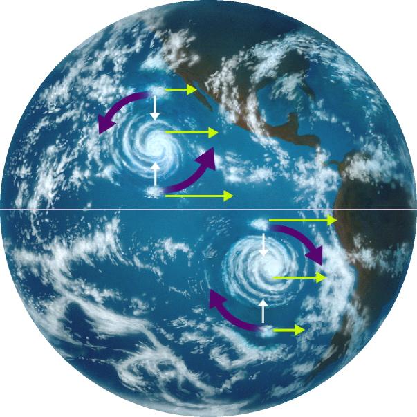 Corioliskraft Logo