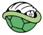 Turtle Team Logo