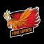 FENIX ESPORT Logo