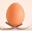 UKW Good Eggs Logo