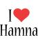 Hamna Logo