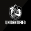 Unidentified Elites Logo