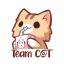 Team C@T Logo